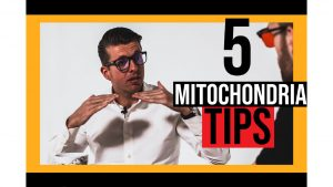 5 mitochondria tips